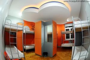 006 txt mosquito hostel